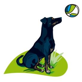 Detall logotip Petaneres